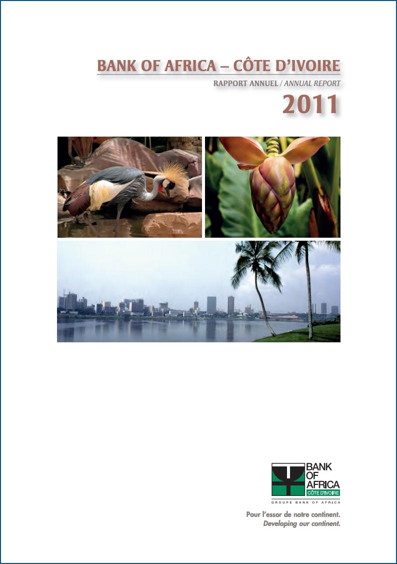 rapport2011 1